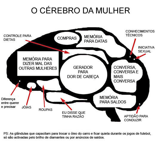 cérebro feminino EuGordinha