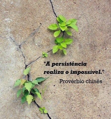 Persistência - EuGordinha